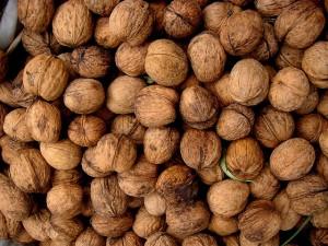 Walnuts, photo courtesy of Molly Holzschlag/flickr.com